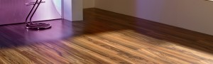 banner_laminant_trend