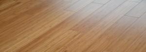 Floorpan3